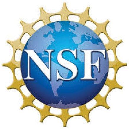 partner-nsf-circle